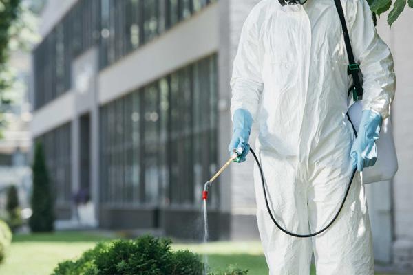 control de plagas para particulares en Barcelona